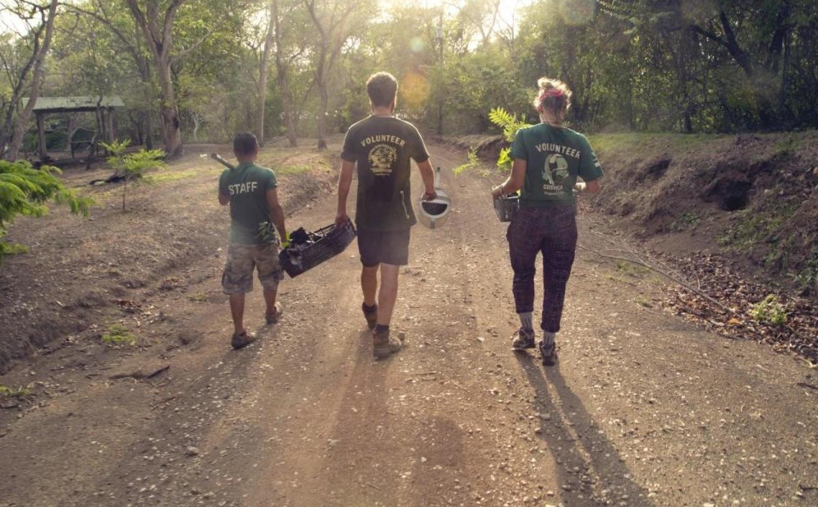 Les volontaires vont planter des arbres au cours de leur chantier jeunes au Costa Rica
